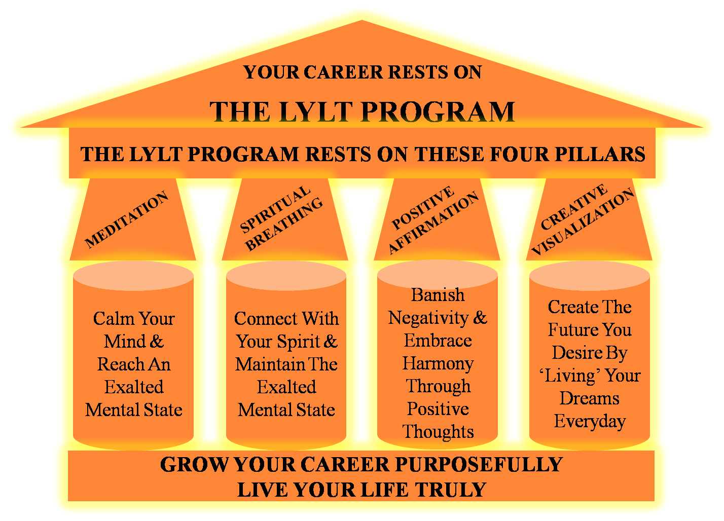 What the LYLT program is